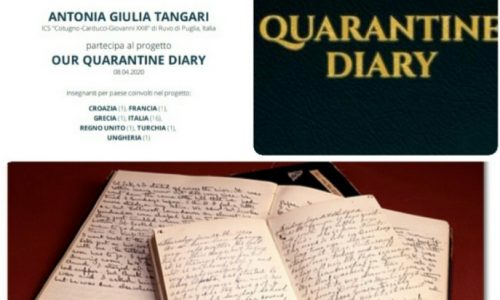 Our quarantine diary