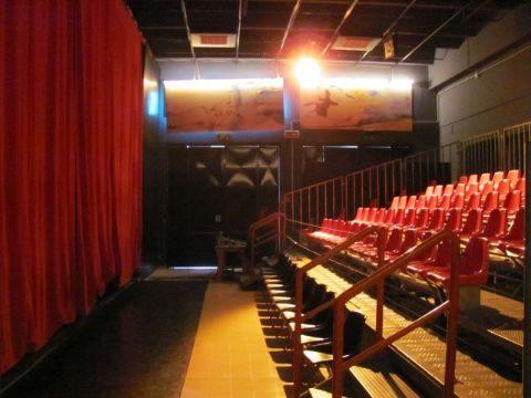 I teatri al tempo del covid